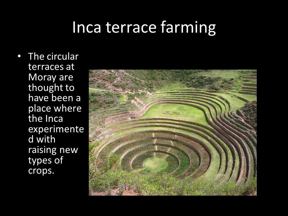Repair of the Inca farming terraces.