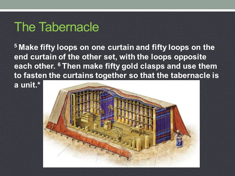 The Tabernacle 5 Make fifty loops on one curtain and fifty loops on the end curtain of the other set, with the loops opposite each other. 6 Then make