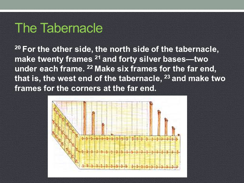 The Tabernacle 20 For the other side, the north side of the tabernacle, make twenty frames 21 and forty silver bases—two under each frame. 22 Make six