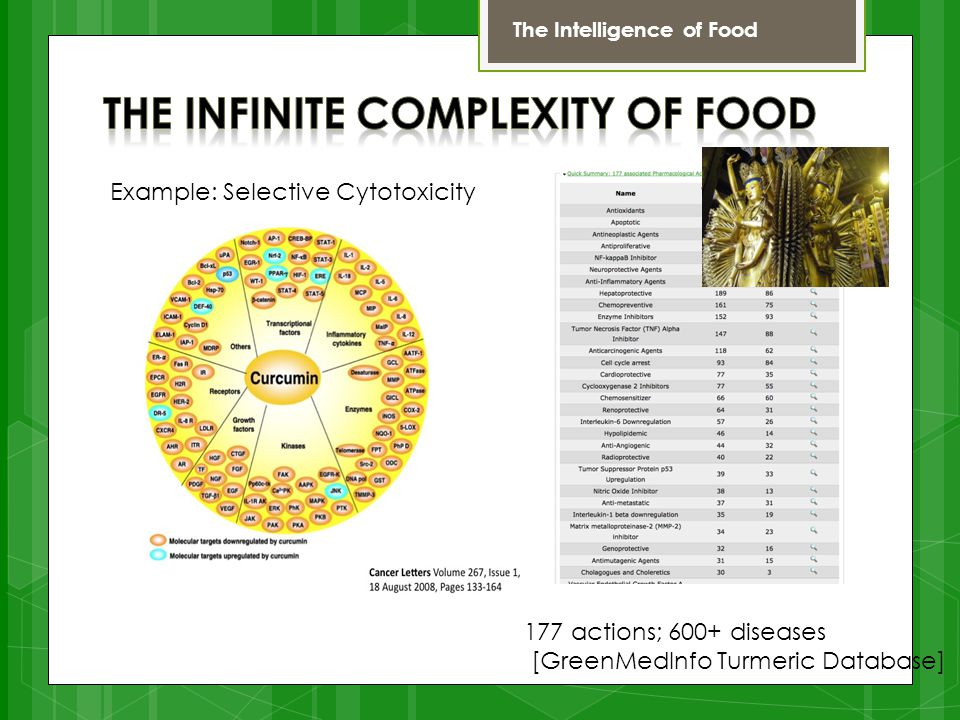 177 actions; 600+ diseases [GreenMedInfo Turmeric Database] Example: Selective Cytotoxicity The Intelligence of Food