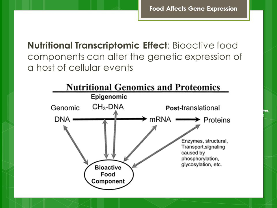 Nutritional Transcriptomic Effect : Bioactive food components can alter the genetic expression of a host of cellular events Food Affects Gene Expression The world's first ice-calorimeter, used in the winter of 1782-83