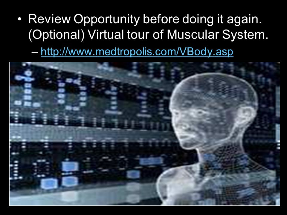 Review Opportunity before doing it again. (Optional) Virtual tour of Muscular System.