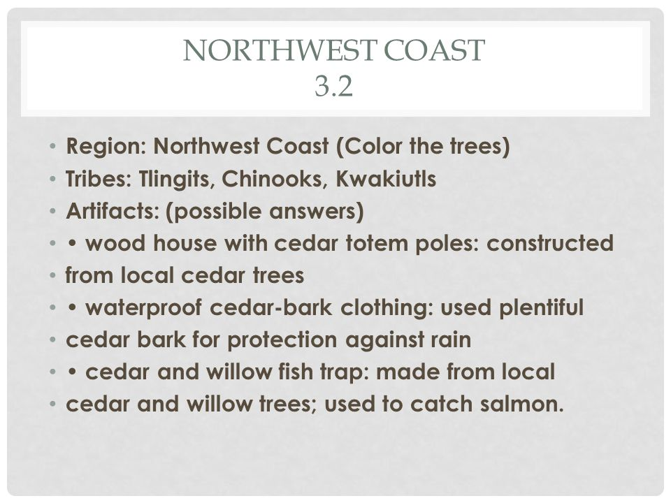 NORTHWEST COAST 3.2 Region: Northwest Coast (Color the trees) Tribes: Tlingits, Chinooks, Kwakiutls Artifacts: (possible answers) wood house with cedar totem poles: constructed from local cedar trees waterproof cedar-bark clothing: used plentiful cedar bark for protection against rain cedar and willow fish trap: made from local cedar and willow trees; used to catch salmon.