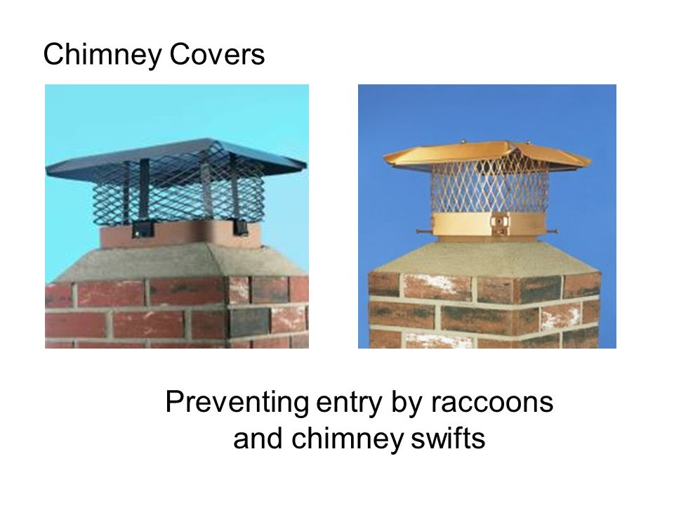Chimney Covers Preventing entry by raccoons and chimney swifts