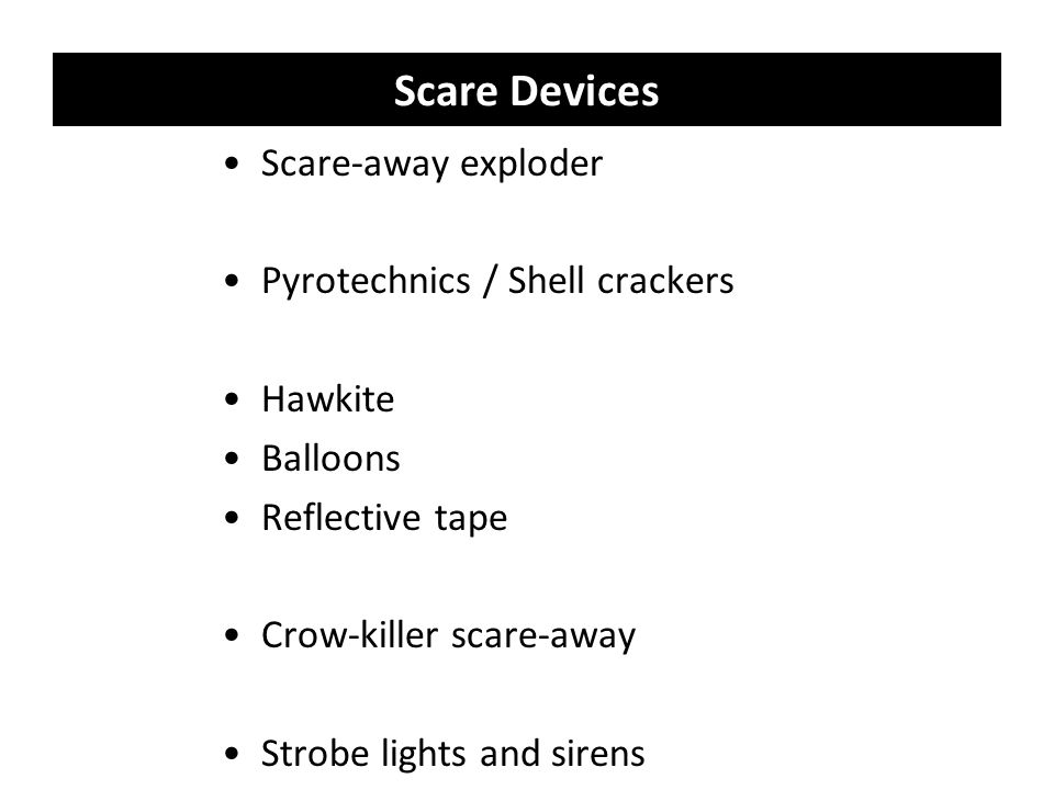 Scare Devices Scare-away exploder Pyrotechnics / Shell crackers Hawkite Balloons Reflective tape Crow-killer scare-away Strobe lights and sirens