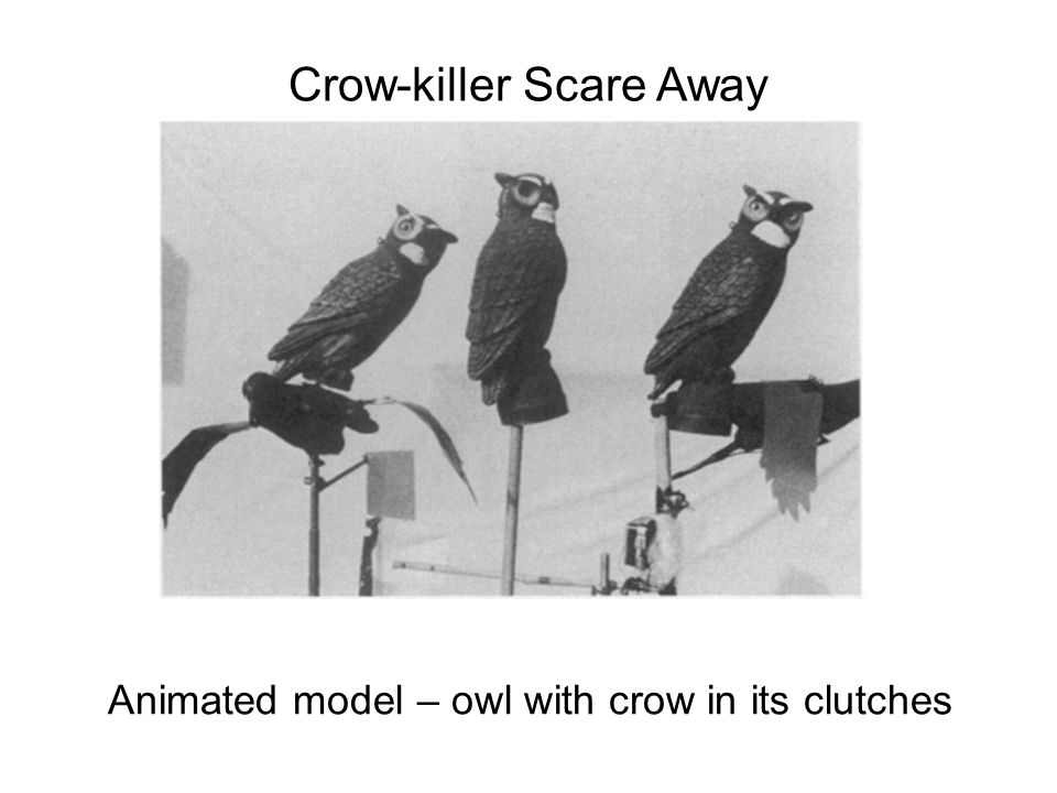 Crow-killer Scare Away Animated model – owl with crow in its clutches