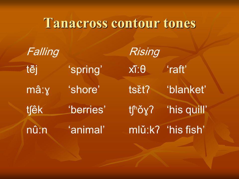 Tanacross level tones HighLow t̕éːs'charcoal'tɬ̕ùːɬ'rope' tsʰáʔ'beaver'sàː'sun' kʰónʔ'fire'tʰùː'water' tθ̕éːx'sinew'sèːkʰ'saliva' tẽjʔ'fly'tʰẽj'trai
