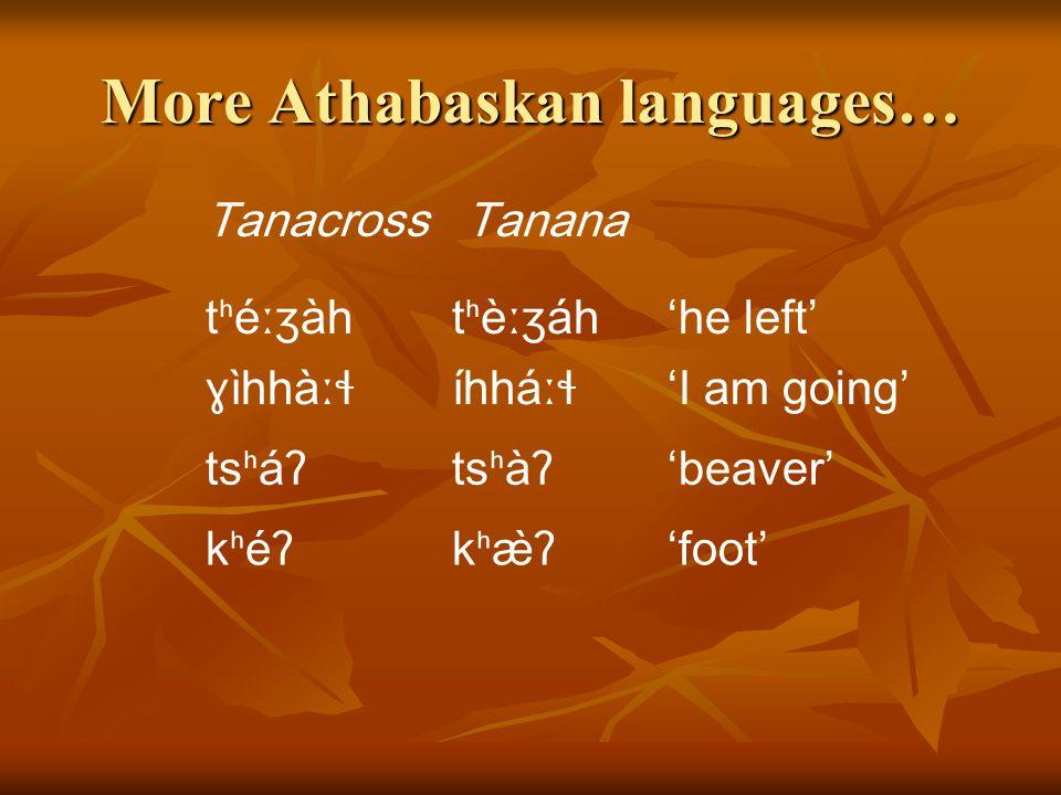 More Athabaskan languages… HareSekani jáʔjàʔ'louse' tùtú'water' tέʔtèl'cane' w̕áʔts̕àʔ'dish'