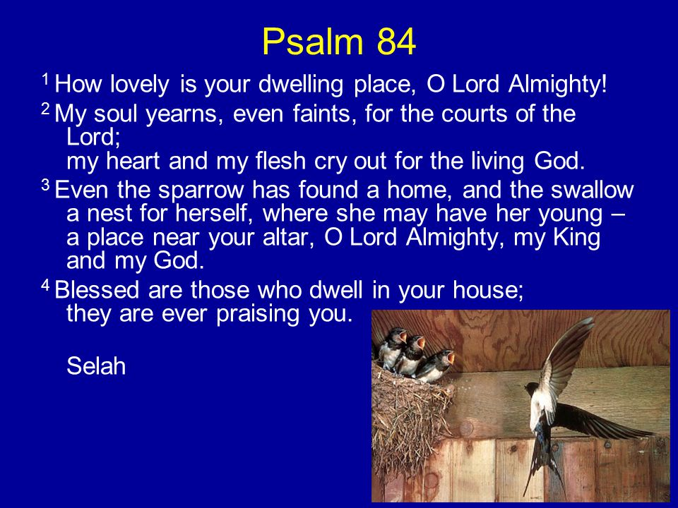 Psalm 84 1 How lovely is your dwelling place, O Lord Almighty.