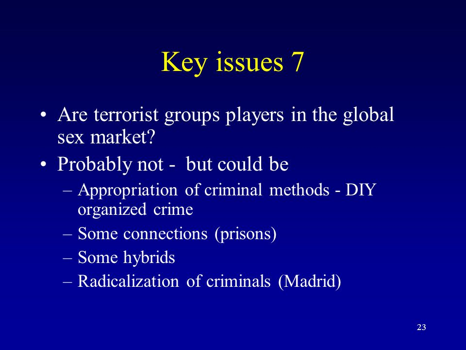 23 Key issues 7 Are terrorist groups players in the global sex market? Probably not - but could be –Appropriation of criminal methods - DIY organized