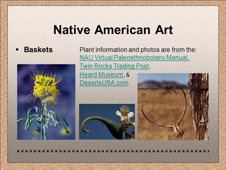 Native American Art  Baskets Plant information and photos are from the: NAU Virtual Paleoethnobotany Manual, NAU Virtual Paleoethnobotany Manual, Twin Rocks Trading PostTwin Rocks Trading Post, Heard MuseumHeard Museum, & DesertsUSA.com