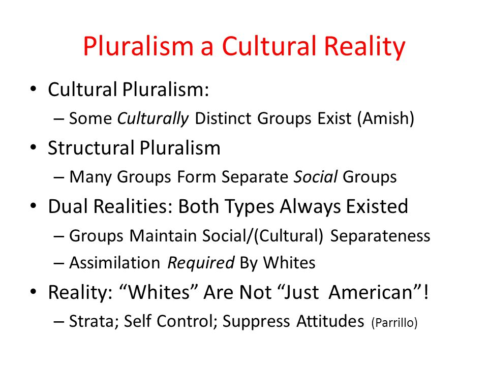 Pluralism a Cultural Reality Cultural Pluralism: – Some Culturally Distinct Groups Exist (Amish) Structural Pluralism – Many Groups Form Separate Soci
