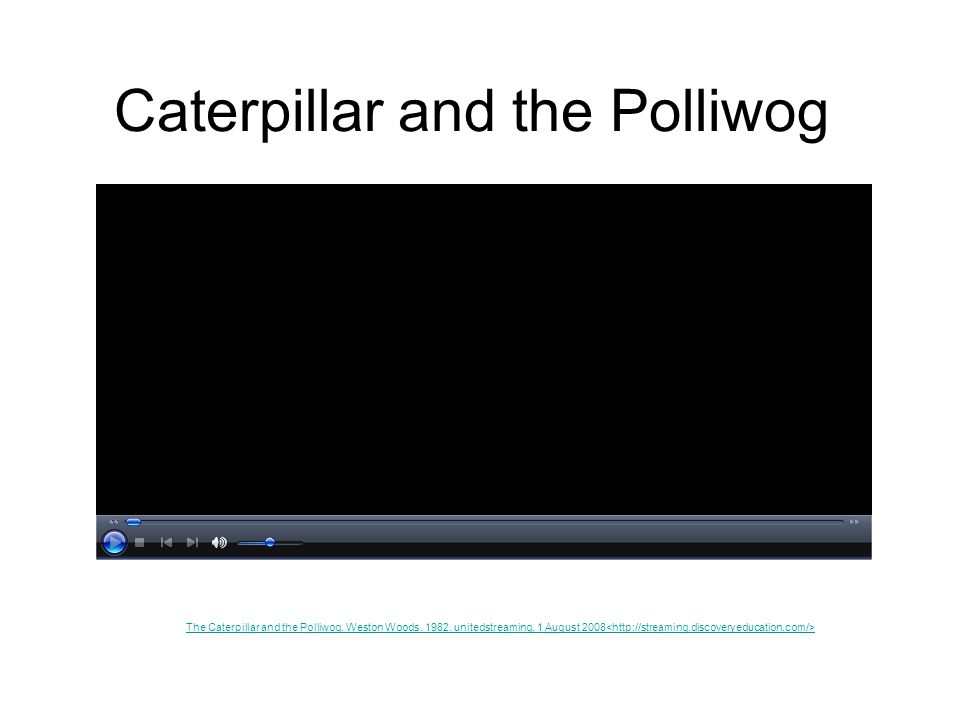 Caterpillar and the Polliwog The Caterpillar and the Polliwog. Weston Woods. 1982. unitedstreaming. 1 August 2008