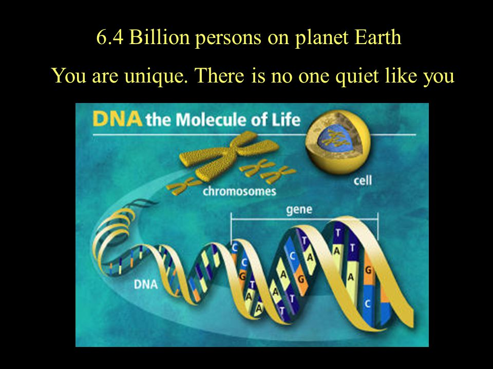 6.4 Billion persons on planet Earth You are unique. There is no one quiet like you