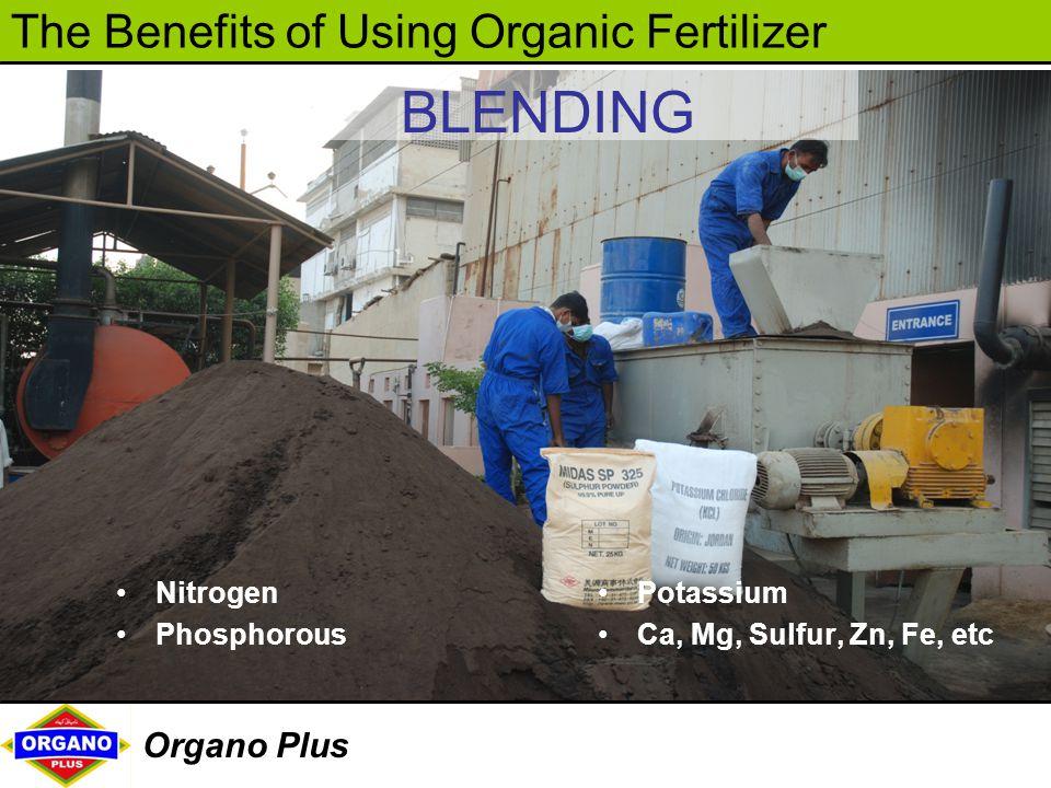 The Benefits of Using Organic Fertilizer Organo Plus BLENDING Nitrogen Phosphorous Potassium Ca, Mg, Sulfur, Zn, Fe, etc