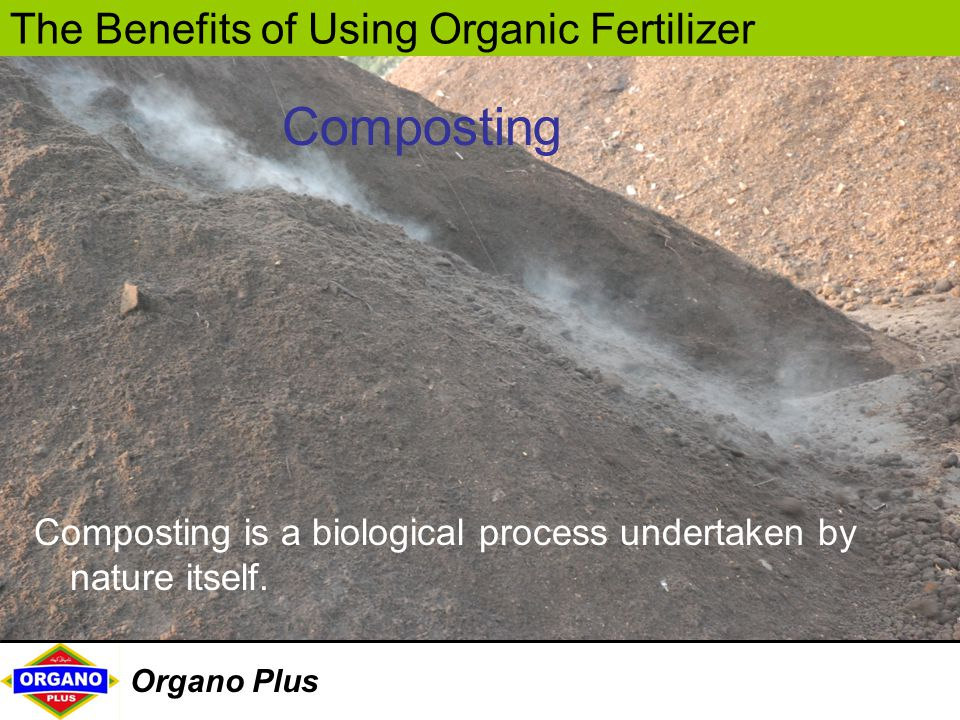 The Benefits of Using Organic Fertilizer Organo Plus Composting is a biological process undertaken by nature itself. Composting
