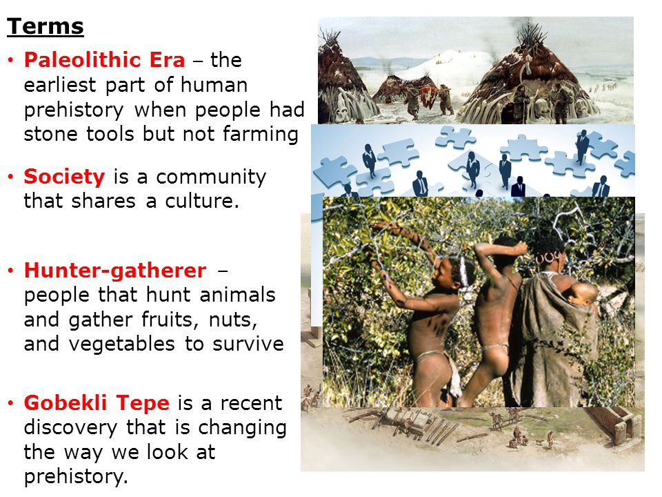 Terms Paleolithic Era – the earliest part of human prehistory when people had stone tools but not farming Society is a community that shares a culture.