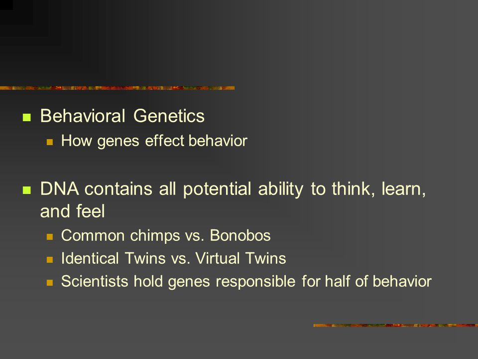 Behavioral Genetics How genes effect behavior DNA contains all potential ability to think, learn, and feel Common chimps vs.