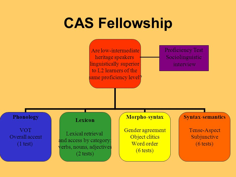 CAS Fellowship Are low-intermediate heritage speakers linguistically superior to L2 learners of the same proficiency level.