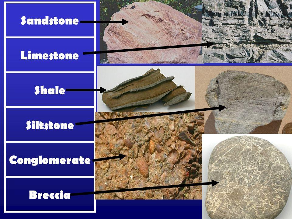 Sandstone Limestone Shale Siltstone Conglomerate Breccia