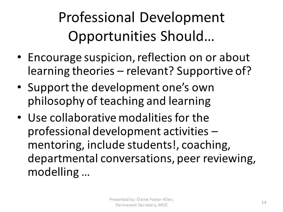 Professional Development Opportunities Should… Encourage suspicion, reflection on or about learning theories – relevant.
