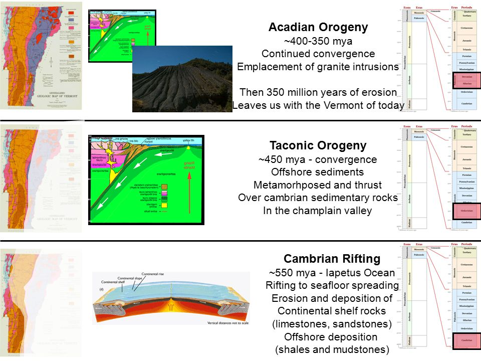 Cambrian Rifting ~550 mya - Iapetus Ocean Rifting to seafloor spreading Erosion and deposition of Continental shelf rocks (limestones, sandstones) Offshore deposition (shales and mudstones) Taconic Orogeny ~450 mya - convergence Offshore sediments Metamorhposed and thrust Over cambrian sedimentary rocks In the champlain valley Acadian Orogeny ~400-350 mya Continued convergence Emplacement of granite intrusions Then 350 million years of erosion Leaves us with the Vermont of today