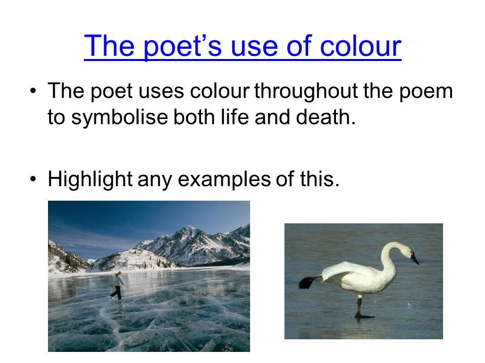 The poet's use of colour The poet uses colour throughout the poem to symbolise both life and death.