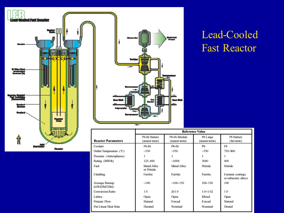 Lead-Cooled Fast Reactor