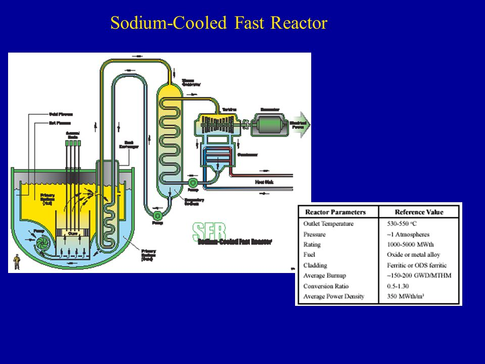 Sodium-Cooled Fast Reactor