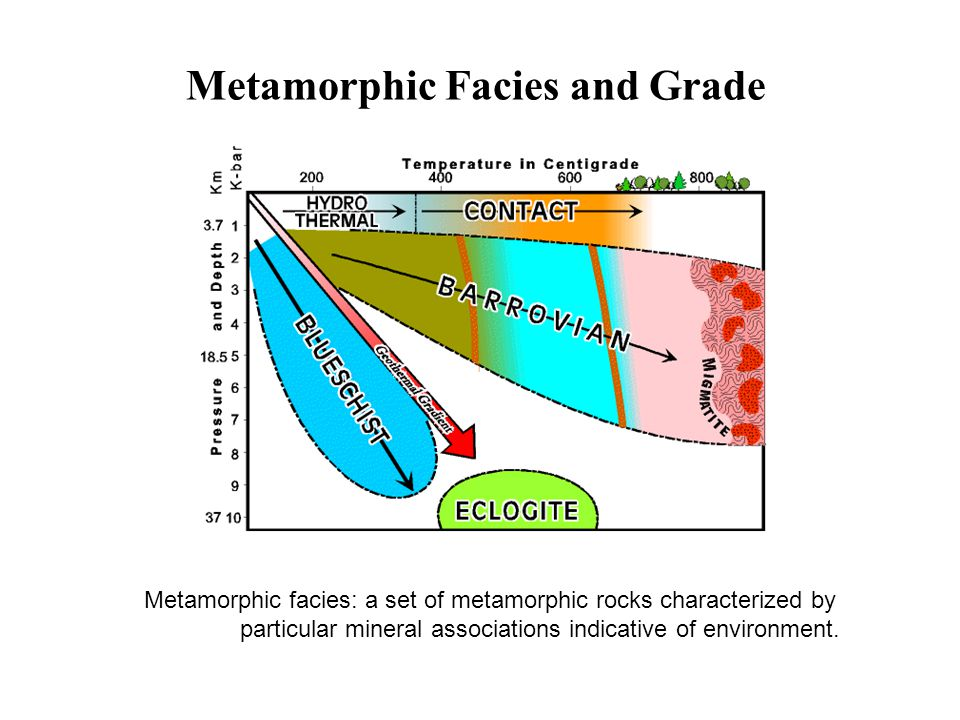 Dynamic metamorphism: Rock deformation associated with fault zones 3 Types of Metamorphism Mylonite from shear zone in Appalachians
