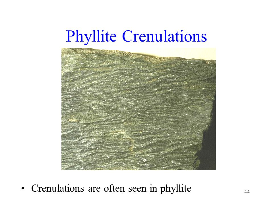 44 Phyllite Crenulations Crenulations are often seen in phyllite