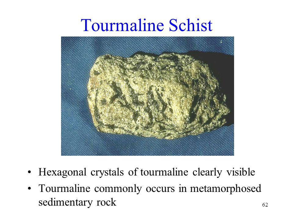 62 Tourmaline Schist Hexagonal crystals of tourmaline clearly visible Tourmaline commonly occurs in metamorphosed sedimentary rock