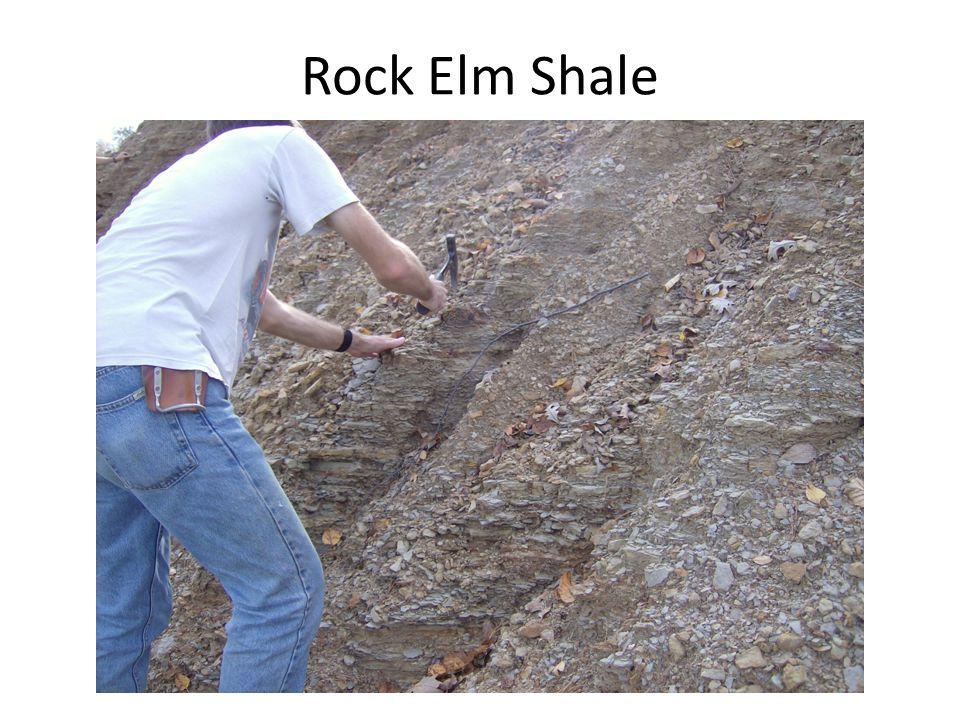 Rock Elm Shale