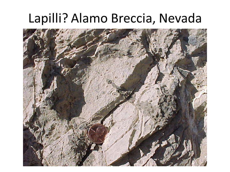 Lapilli? Alamo Breccia, Nevada