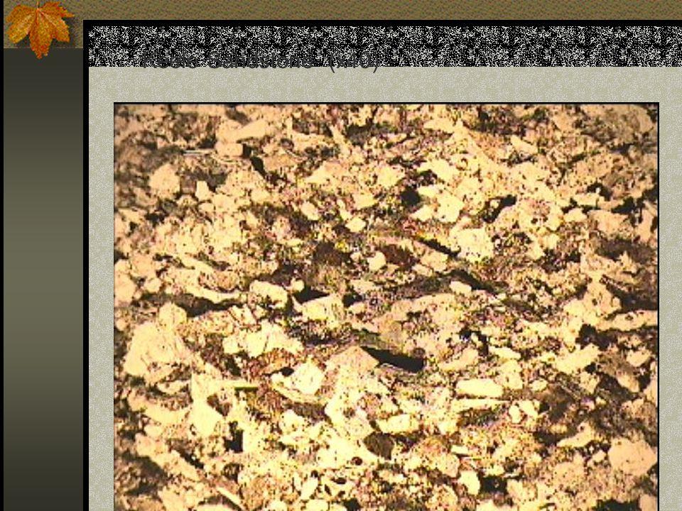 Keele Sandstone (x40)