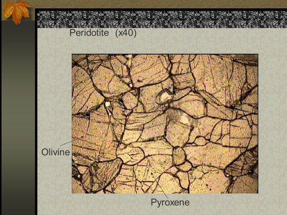 Peridotite (x40) Olivine Pyroxene