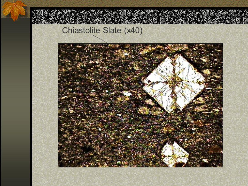 Chiastolite Slate (x40)