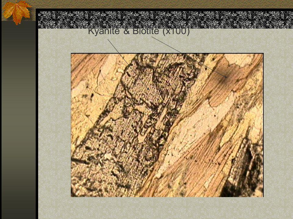 Kyanite & Biotite (x100)