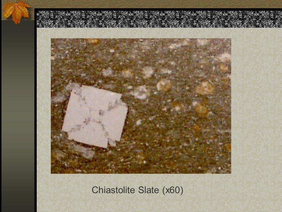Chiastolite Slate (x60)