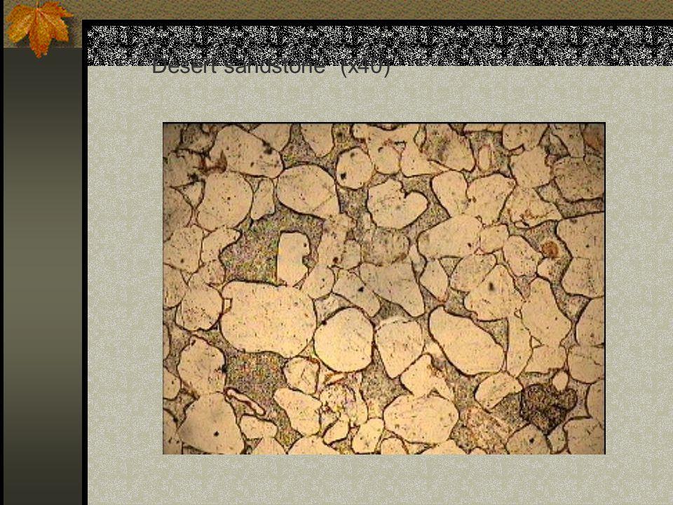 Desert sandstone (x40)