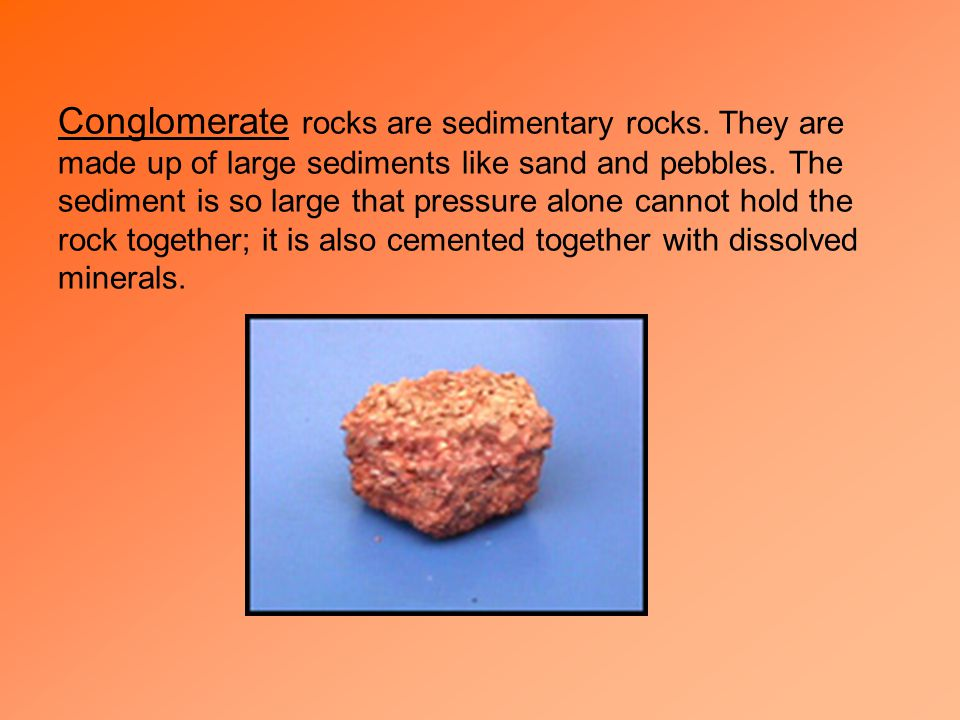 c. Organic – rocks formed from the remains of plants and animals. Ex: coal and limestone made of shell fragments 2. Characteristics of Sedimentary Roc