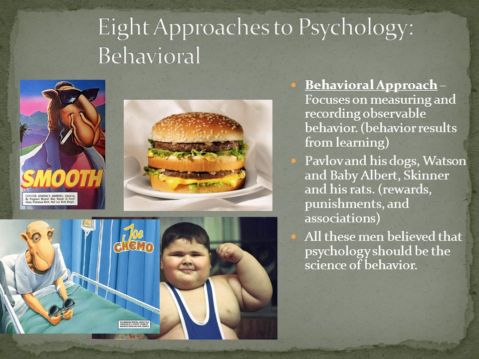 Behavioral Approach – Focuses on measuring and recording observable behavior. (behavior results from learning) Pavlov and his dogs, Watson and Baby Al