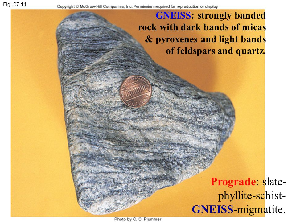 Fig. 07.14 Prograde: slate- phyllite-schist- GNEISS-migmatite. GNEISS: strongly banded rock with dark bands of micas & pyroxenes and light bands of fe