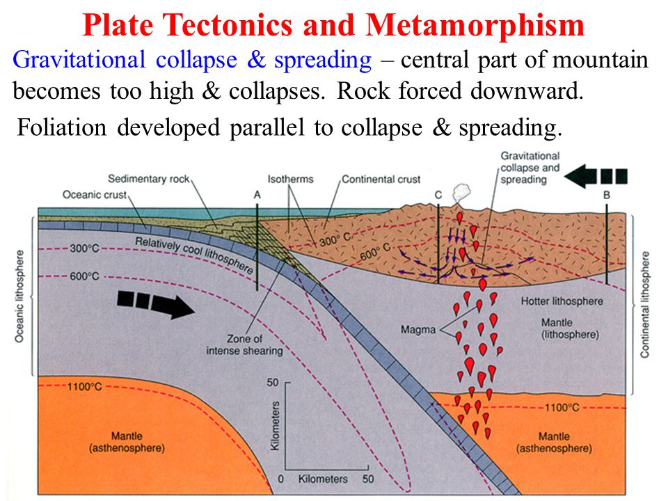 Gravitational collapse & spreading – central part of mountain becomes too high & collapses. Rock forced downward. Foliation developed parallel to coll
