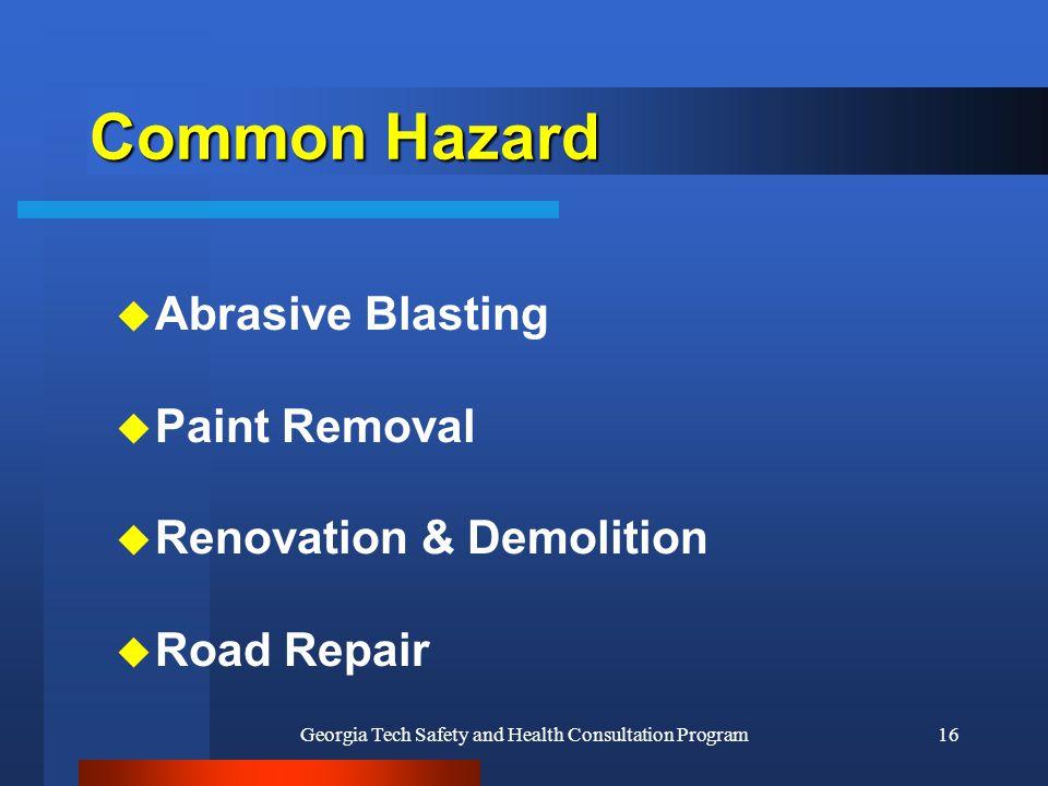 Georgia Tech Safety and Health Consultation Program16 Common Hazard u Abrasive Blasting u Paint Removal u Renovation & Demolition u Road Repair