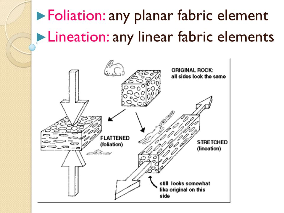 ► Foliation: any planar fabric element ► Lineation: any linear fabric elements