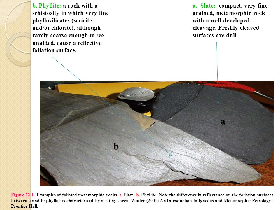 Figure 22-1. Examples of foliated metamorphic rocks.