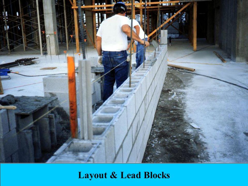 31 Layout & Lead Blocks