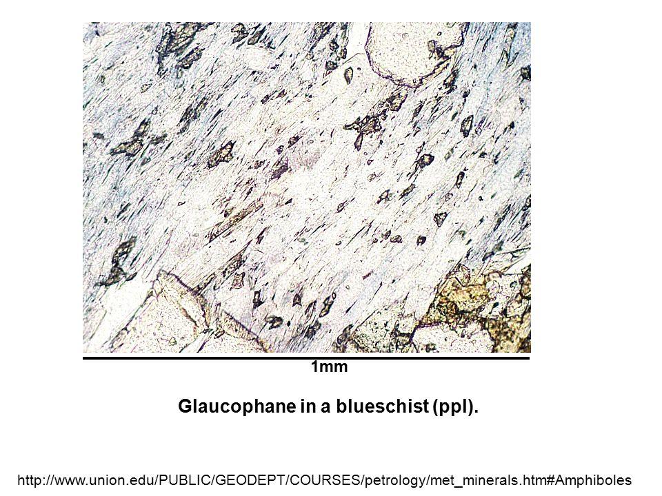 1mm Glaucophane in a blueschist (ppl). http://www.union.edu/PUBLIC/GEODEPT/COURSES/petrology/met_minerals.htm#Amphiboles