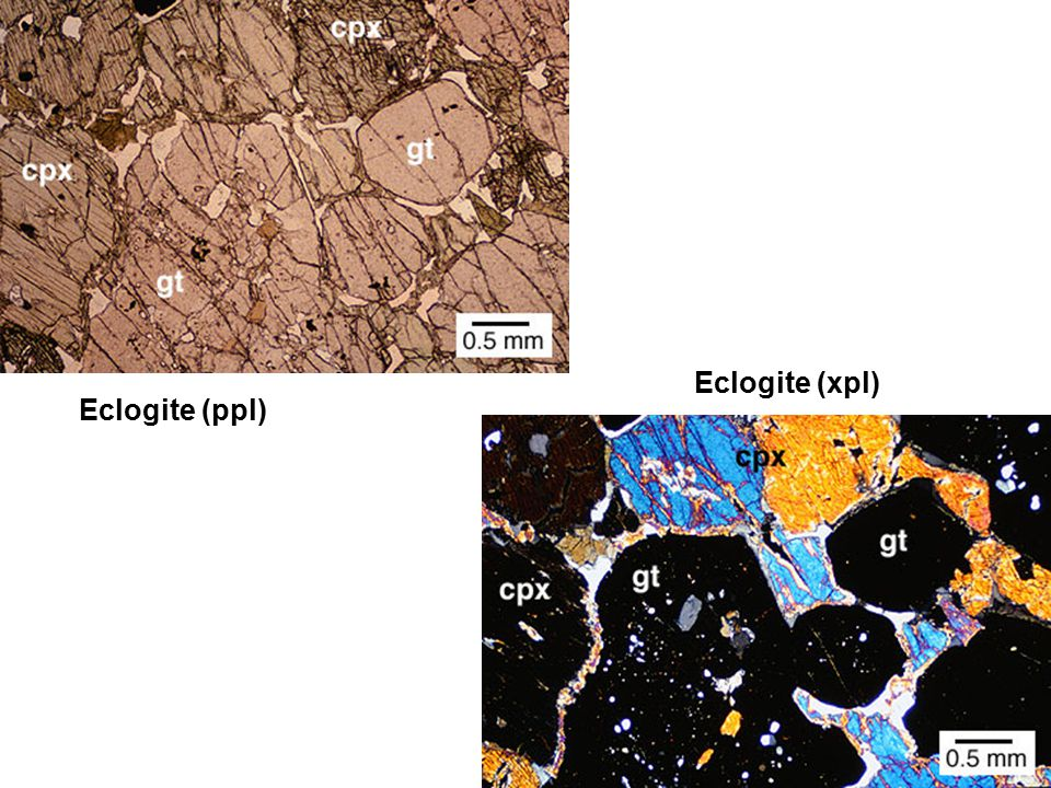 Eclogite (ppl) Eclogite (xpl)